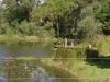 Sunshine Coast Farmstay