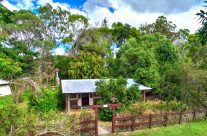Bottlebrush Cottage