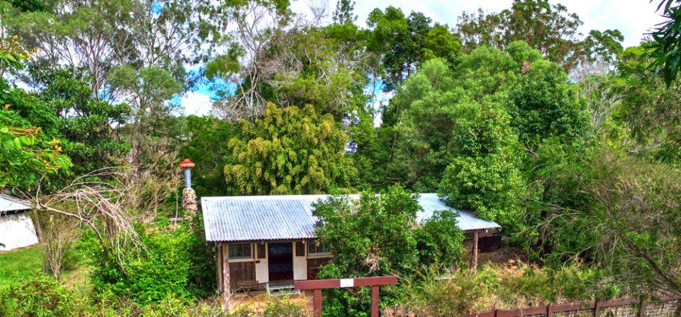 Bottlebrush Cottage